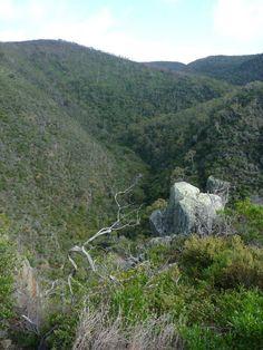 Deep Creek, between Trig and Tapanappa