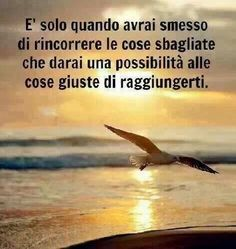 Le frasi più belle~it is only when you stop chasing the wrong things you give the right things a possibility to reach you~
