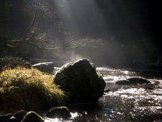 Von Zwettl über den Moidramsberg zur Gschwendtmühle - der Naturfreundeweg 2. Mountains, Nature, Travel, Friend Moving Away, Woodland Forest, Landscape, Voyage, Viajes, Traveling