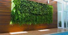 Lindo-e-Moderno-Jardim-Vertical