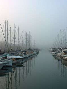 Weymouth Marina in the morning mist Weymouth Dorset, The Places Youll Go, West Coast, Mists, Seaside, The Row, The Good Place, New York Skyline, Sailing