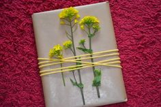 Eenvoudig en creatief inpakken, met koolzaad.