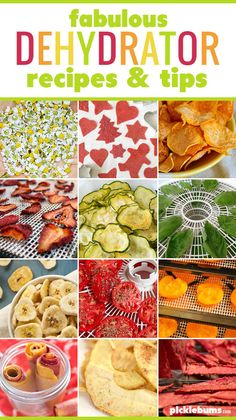 Do you have a food dehydrator sitting in the cupboard? Check our our tips and ry one of these fabulous dehydrator recipes. I Love Food, A Food, Food Collage, Baking Basics, Mouth Watering Food, Healthy Family Meals, Dehydrator Recipes, Base Foods, Pinterest Recipes