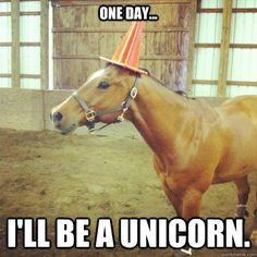One Day.... I'll be a unicorn :)