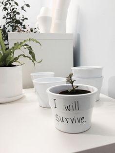 """Biała, minimalistyczna doniczka  """"I will survive."""" malowana ręcznie. Doniczka sprzedawana bez roślinki. Wysokość 9cm, otwór średnica 12cm. Brak dziury na spodzie doniczki. Pakowane w eko kartonik."""