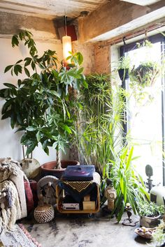 Marina Burini stylist and co-owner of beautiful dreamers at her home and store in Brooklyn #boho