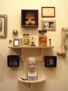 Museum of Natural and Artificial Ephemerata (Austin) - DIY collection of eclectic holdings