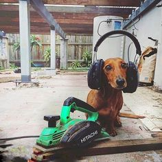 Todays heat has been ruff!  New post from our Construction and Home Improvement BlogSpotposted courtesy of Urban Courses' featured industry suppliers.