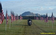 The Field of Flags at the Buffalo Chip Campground during the Sturgis Rally