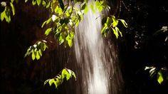 Fraga de Água d'Alta