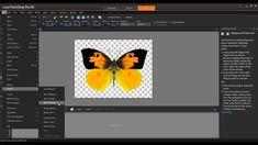 PaintShop Pro Tutorial: Working with Transparency in Corel PaintShop Pro X6
