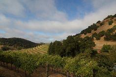 california trip, part one