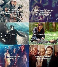 Narnia, lord of the rings, Percy Jackson, hunger games, MORTAL INTRUMENTS♡, and Harry potter. That's right. I knowwww things