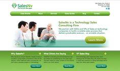 SalesNv #MESH_LiveBuild #Website #Technology #Sales #Consultants