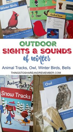 Outdoor Sights and S