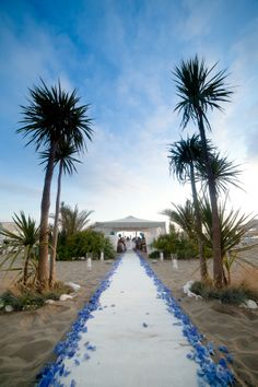 a blue hydrangeas petals path to mark the aisle for your beach wedding