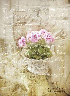 Soft Beauty by Kerstin Frank art, via Flickr