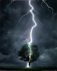 Lightning is one of the most beautiful displays in nature. It is also one of the most deadly natural phenomena known to man. Earth Poster, Dame Nature, Nature Nature, Spring Nature, Wild Weather, Lightning Strikes, Lightning Bolt, Lightning Storms, Amazing Nature