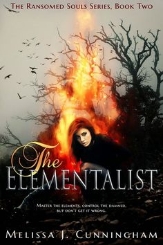 The Elementalist Book Blitz: Winner's Choice of eBook from Clean Teen Publishing and Bookmark Swag Pack Cool Gifts For Teens, Books For Teens, Teen Books, Books To Read, My Books, Love Moves, Lol, Paranormal Romance, Christmas Books