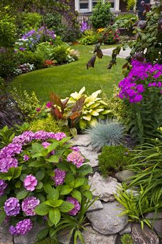 This garden is sparked by interesting foliage. Complementing the hydrangea and phlox are variegated canna, hosta, blue fescue, red cordyline, various gold-leaved plants, and even a purple-leaved hazelnut.