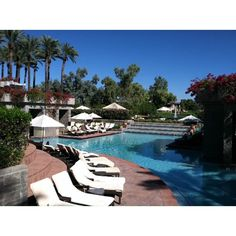 Quick! Would you be lounging poolside right now, or taking a dip in our pool?  #luxury #lounging #pool #poolside #hyattscottsdale #scottsdale #vacation #arizona #holiday
