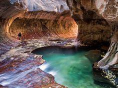 Canyon, Zion National Park, Utah, USA