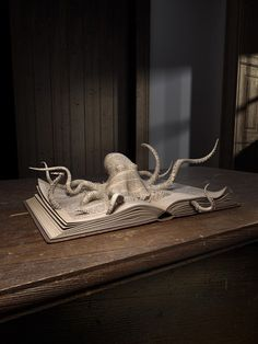 The Image Foundation, Book Art, Octopus Drawn Art, Altered Book Art, Book Sculpture, Paper Sculptures, Up Book, Kraken, Book Folding, Book Projects, Clay Projects