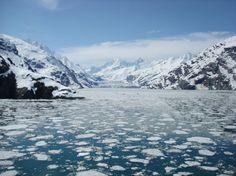 The pristine beauty of Glacier Bay.