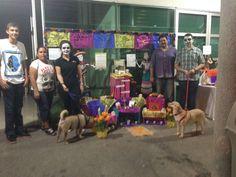 El altar de @Barrio News (ajúa!) Dedicado a Chicha y a todos los callejeritos