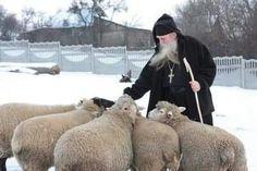 Blessing the flock?