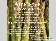 Asparagus, Mary Washington Seeds, Order now, FREE shipping in San Francisco CA - Free San Francisco SuperAds
