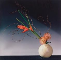 View Flower arrangement by Robert Mapplethorpe on artnet. Browse upcoming and past auction lots by Robert Mapplethorpe. Patti Smith, Flower Images, Flower Photos, Wabi Sabi, Robert Mapplethorpe Photography, Still Life Images, Orange Flowers, Pale Orange, Black And White Portraits