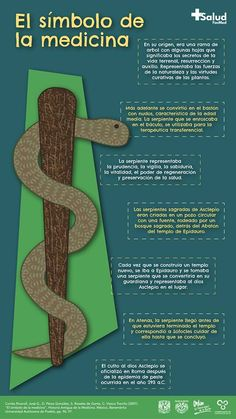 In the true symbol of medicine, the snake represents prudence, l … - All About Health Medical Students, Medical School, Nursing Students, Medicine Notes, Medicine Student, Curious Facts, Medical Anatomy, Med Student, Med School