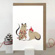 Cat christmas card packs, cat card for Christmas, cat wrapping papers, cat cards, pack of christmas