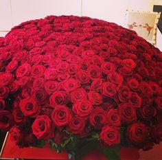 gargantuan bunch of roses