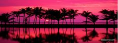 Pink Sunset Facebook Covers, Pink Sunset FB Covers, Pink Sunset Facebook Timeline Covers, Pink Sunset Facebook Cover Images