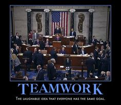 There Is No TEAM in Politics