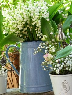 ❧ Lily of the valley - Muguet ❧