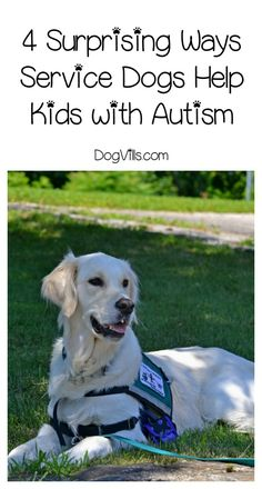 Can A Service Dog Be For Lung Issues