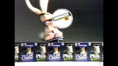 Energizer Battery Purina Cat Chow Commercial 1989 - YouTube Energizer Bunny, Chow Chow, It Works, Advertising, Commercial, Cat, Youtube, Cat Breeds, Nailed It