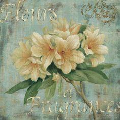 Vintage Fragrance I Print by Daphne Brissonnet at AllPosters.com