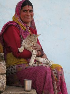 Image result for cat in India