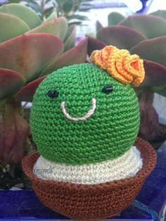 Amigurumi sr. y sra. cactus