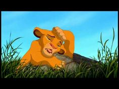 The Lion King - Morning Report