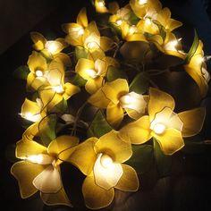 20 gelbe Orchidee Blume String Lichterketten von marwincraft