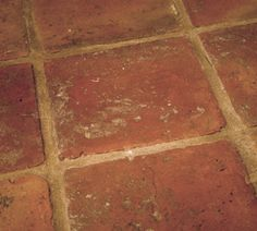 rustic terracotta tiles - for E.L kitchen / dining room