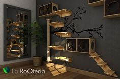 ideas for a cat climbing wall and cool climbing landscapes - Cats climbing landscape idea shelves wooden boxes -