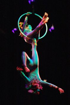The Birdcage - Aerial Performers