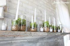 Decorating-with-moss-1a.jpg 800×533 pixels
