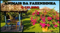 Amazônia - São Francisco do Pará - O Celeiro - Fazendinha - Celcoimbra -...